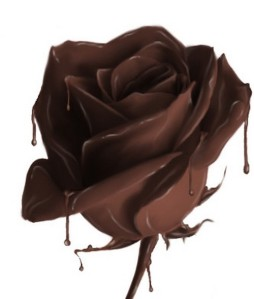 chocolate_rose.86193223